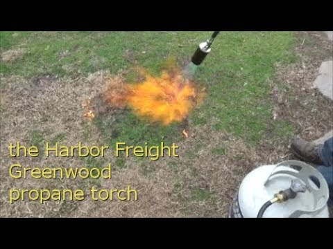 reviewing the Harbor Freight Greenwood propane torch