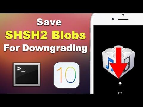 Save iOS 11 SHSH2 Blobs for Downgrading (3 METHODS - Mac & Windows) | Preserve Your Jailbreak!