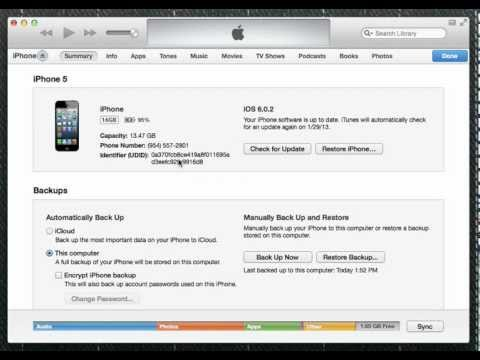 Find Your iPhone Device ID (UDID)