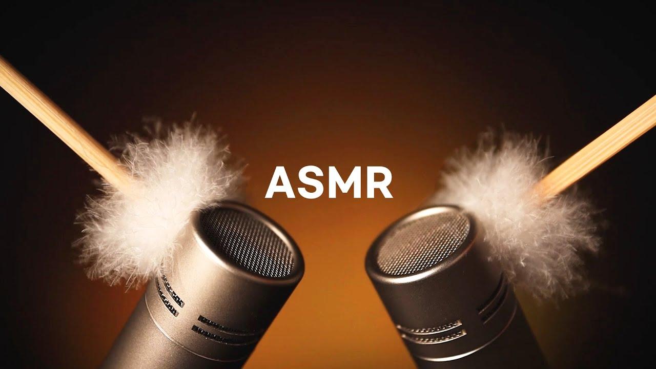 [ASMR] Best Preview Collection 🌙✨ ASMR학과 팅글학개론 제 2강