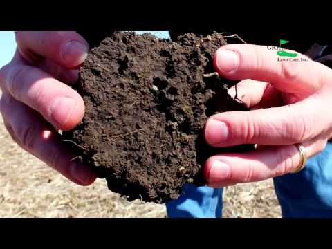 It's All About The Soil - How To Get Started Improving Your Lawn