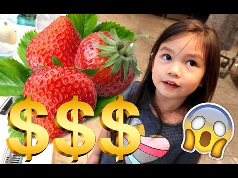 THE COST OF FRUIT IN JAPAN'S DEPARTMENT STORES! -  ItsJudysLife Vlogs