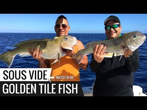 Sous Vide GOLDEN TILE Fish Recipe! Ninja's Catch n Cook.