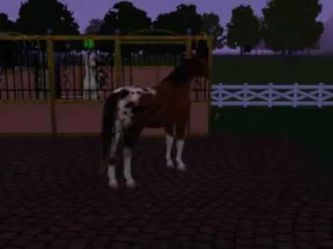 The Sims 3 Pets - Horses Mating