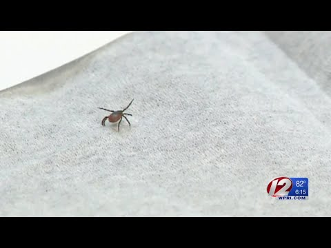 New program seeks to help reduce the chance of developing lyme disease