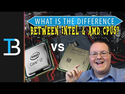 Should You Buy An AMD or Intel Processor? (What's The Difference Between Intel & AMD CPUs!)