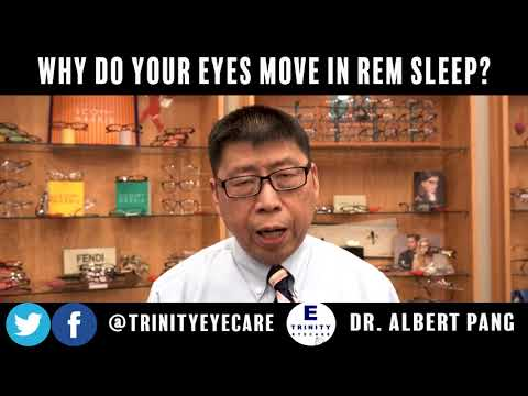 Why Do Your Eyes Move in REM Sleep? | Dr. Pang, Trinity Eye Care