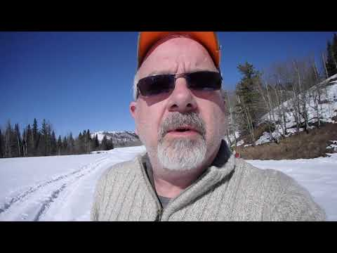 Snowshoeing in K-country