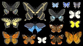 North American Butterflies - Insects - The Kids