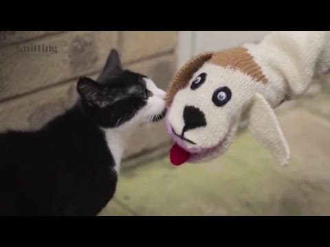 Cat And Dog Sock Puppet Knitting Pattern (The Knitting Network WTD007)