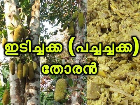 ചക്ക(ഇടിച്ചക്ക)തോരൻ  Idichakka Thoran Recipe Kerala Jackfruit recipe