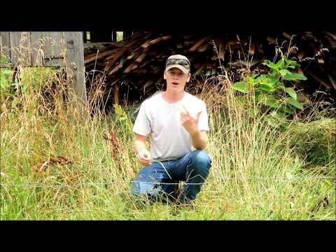 How to Easily Test if an Electric Fence is On