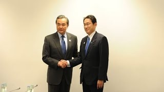 Wang Yi urges Japanese FM to safeguard foundations of bilateral ties