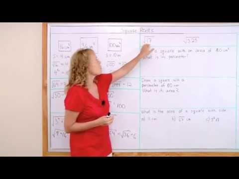 Learn Square Roots: Beginner Lesson (Pre-algebra)