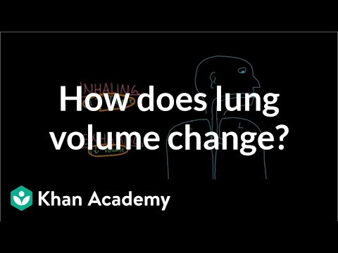 How does lung volume change? | Respiratory system physiology | NCLEX-RN | Khan Academy