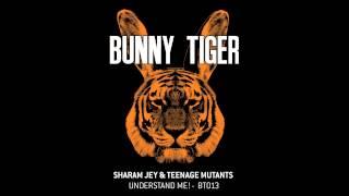 Sharam Jey & Teenage Mutants - Understand Me! BT013