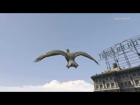 flying a bird onto a blimp