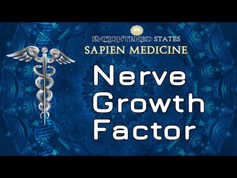 Nerve Growth factor (targeted to brain and entire nervous system)
