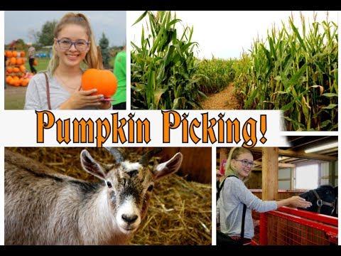 Pumpkin Ranch Vlog    2017