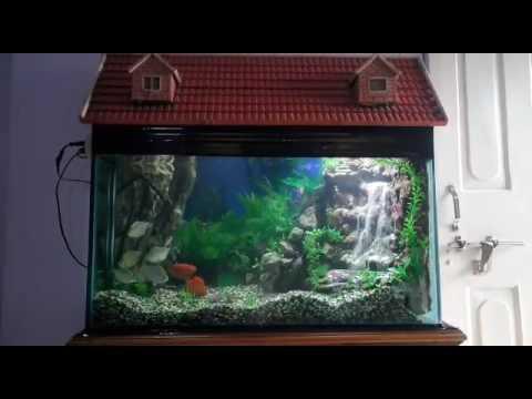 Diy Waterfall aquarium