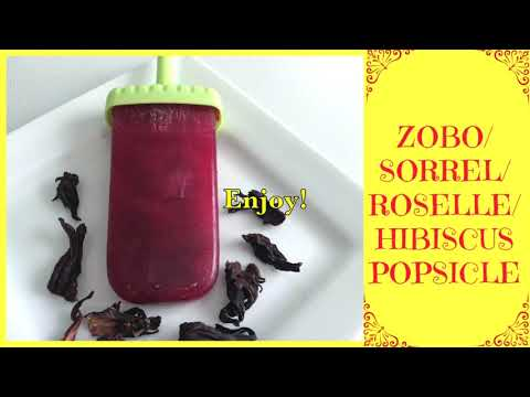 How to Make the Best SUGAR FREE Zobo Popsicle | Sorrel | Homemade Popsicle