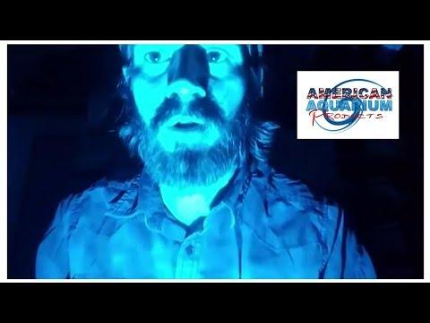 Moonlight Aquarium Lighting- Lunar Cycle Phases Truth