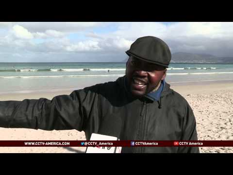 Shark spotters in South Africa keep surfers safe