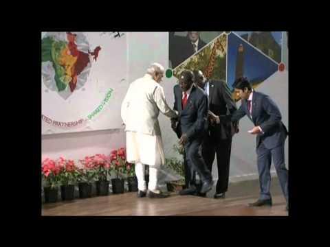 Video footage showing Zimbabwean President Robert Mugabe lose balance in India (Courtesy AP)