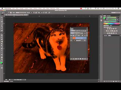 Add Color Layer and Adjust Layer Blend Mode and Opacity in Photoshop CS6