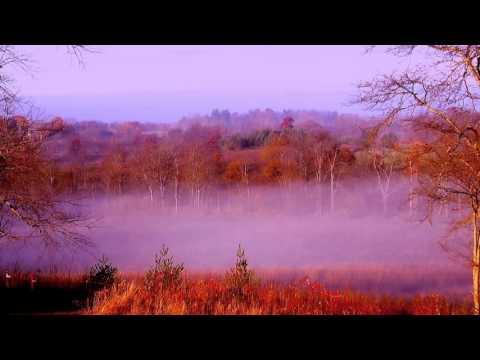 River of Fog in the morning sun. 10-30-2015