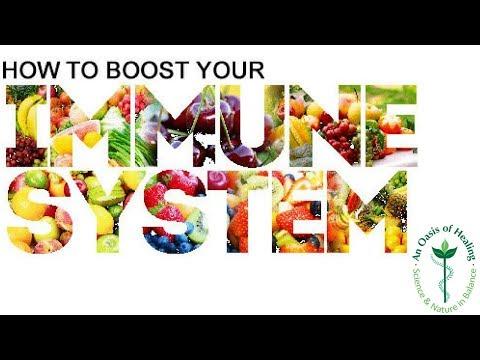 Best Immune System Booster