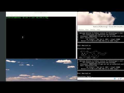 Issue or issue.net ssh motd en Fedora 19