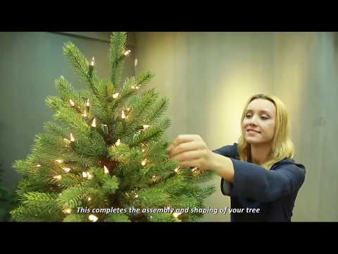 Puleo International Christmas Tree Assembly Video 2017