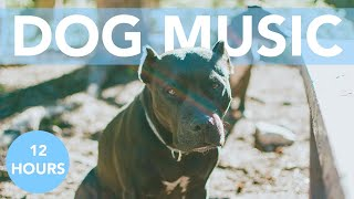 RELAXING DOG MUSIC for Anxious and Hyperactive Dogs! NEW!