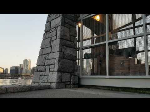 The 9 o'clock Gun at Stanley park in Vancouver Canada