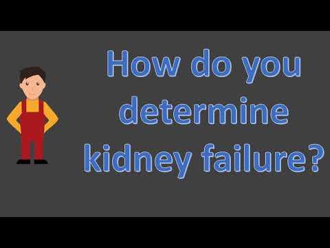 How do you determine kidney failure ?