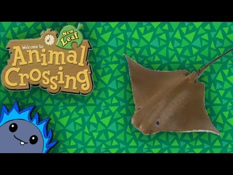 CATCHING A RAY -  Animal Crossing: New Leaf