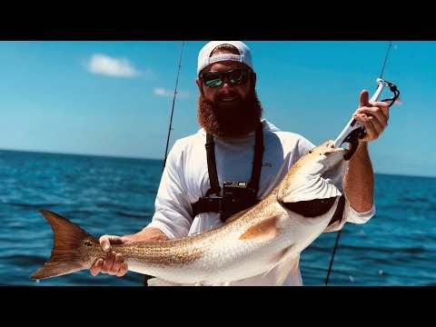 How To Catch MONSTER Bull Reds!