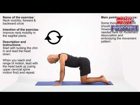 Neck mobility: Forward & Backward Circle