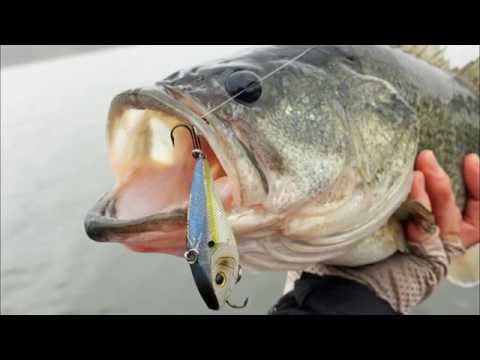 Search Baits for Clear Water Bass Fishing - How to Catch Bass - Spring Largemouth Fishing Tips