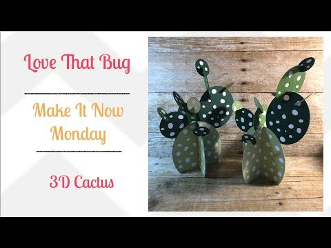 Cricut Explore | 3D Cactus