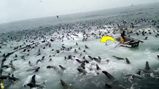 If These 12 Moments Were Not Filmed, Nobody Would Believe It