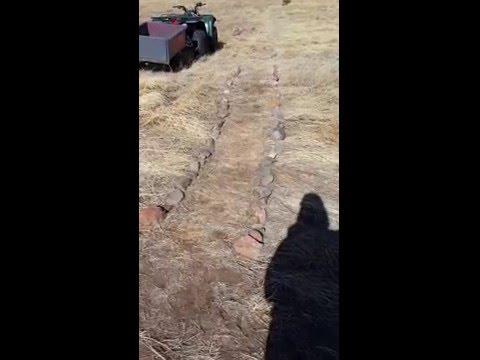 rock path to the garden