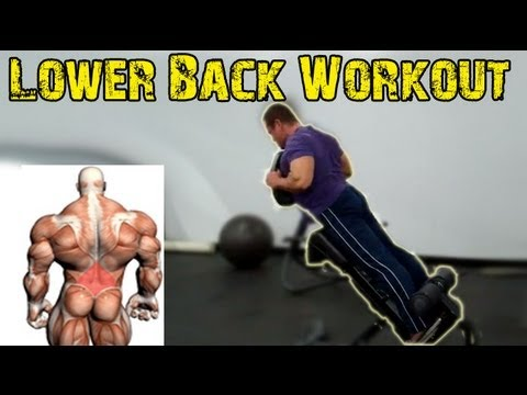LOWER BACK Exercises - Build a Strong Back