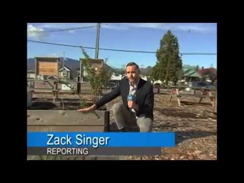 Zack Singer - On Location Reporting - Demo Reel