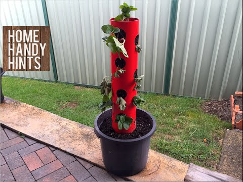How to make a Strawberry - Herb Tower