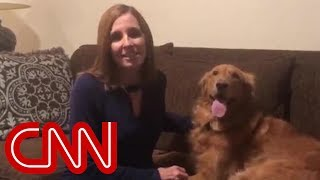 Dog steals show during concession speech video