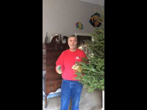 Easy Christmas Tree Removal