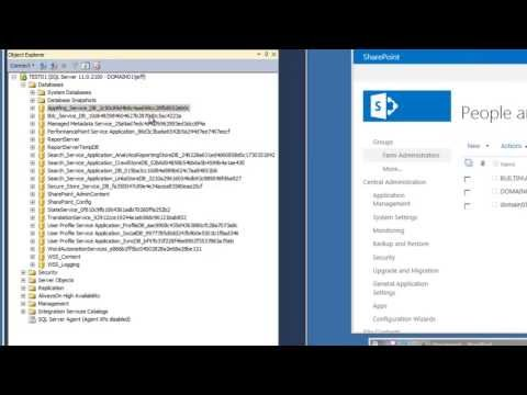 SharePoint 2013 Tutorial - Rename Application Database Prerequisites