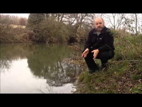 Riverbank undermining by Signal Crayfish in the UK